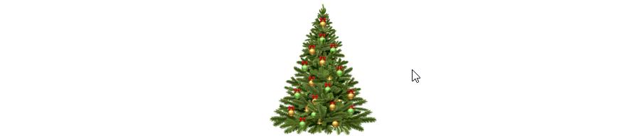 weihnachtsbaum-geschmueckt