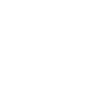 Von_Jungfeld_Logo_Home