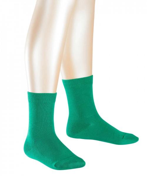 Jungen-Socken-grün-Falke-10645-7290-front